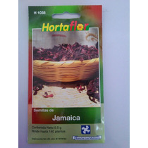 140 Semillas De Jamaica