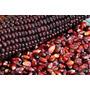 Semillas De Maiz Rojo Autoctono - Zea Maiz Codigo 148