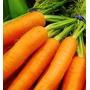 Zanahoria 20 Semillas Hortaliza Jardín Planta Sdqro