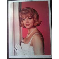 Poster De Editorial La Prensa Dorothy Malone