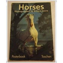Colección Robert Vavra * 4 Posters Caballos * Alemania 1993