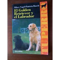 El Golden Retriever Yel Labrador-aut-hilary Vogel-cupula-rm4