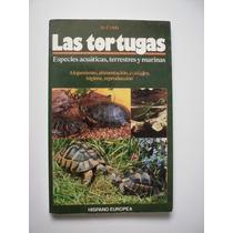 Las Tortugas - Jo Cobb - 1993
