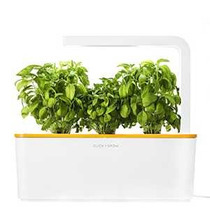 Click & Grow Shgs5usw Inteligente Herb Garden Kit De Cultivo