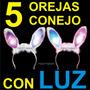 5 Orejas De Conejo Luz Fiesta Bunny Boda Despedidas Bar Xv