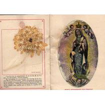 Reliquia Milagrosa Vistas Y Flores De La Tierra Santa 1909.