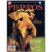 Revista Perros Pura Sangre Airedale Septiembre 1999