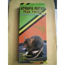 Trampa Charola De Pegamento Para Ratas