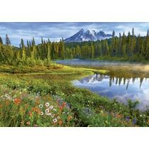 16309 Parque Nacional Monte Rainier Rompecabezas Educa 1500p