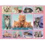 Puzzle Ravensburger 100 Piezas Collage De Gatitos 10530