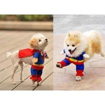 Disfraz Superman Perro Chihuahueño Juguete Talla 2 Altu 24cm
