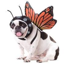 Disfraz Para Perro Tamaño De La Mariposa Del Traje Del Perr