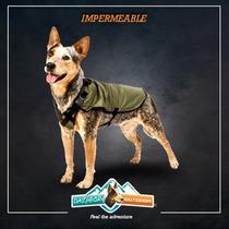 Impermeable Para Perros - Chico - Dazhbor