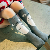 Socks Totoro!!! Calceta Anime