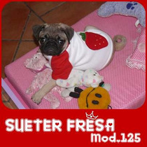Ropa Para Perros,tu Mascota Lucira, Sueter Fresita Hermoso!!