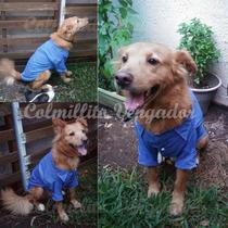 Camisas Para Perro Tallas Grandes, Elegante, Hipster