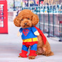 Ropa Para Chachorro Super Man Super Hereo Perro Envio Gratis