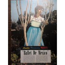 Poster De Amalia Hernandez Presneta Ballet De Mexico