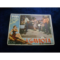 La Gaviota Ma Antonieta Pons Rumbera Lobby Card A