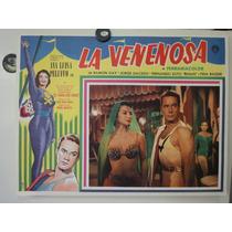 Cartel La Venenosa Ana Luisa Pelufo Ramon Gay Miguel Morayta
