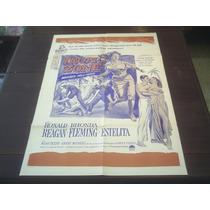 Poster Original Tropic Zone Ronald Reagan Rhonda Fleming 53