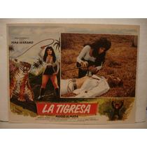 Irma Serrano , La Tigresa , Cartel De Cine