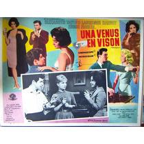 Lobby Cards,carteles,elizabeth Taylor Una Venus En Vison