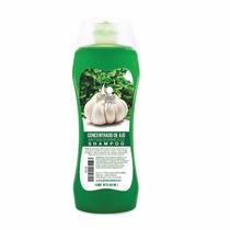 Shampoo Concentrado De Ajo Cabello Graso Sheló Nabel