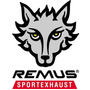 Remus Exhaust Carbon Fiber Black Escape Universal 2 Puntas