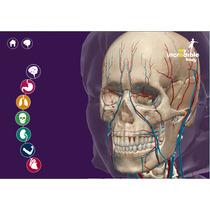 3d Programa Mi Increible Cuerpo Anatomia Para Niños 2015
