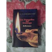 Libro El Evangelio Del Domingo, Rev. P. Dr. Arnaldo Rigodanz