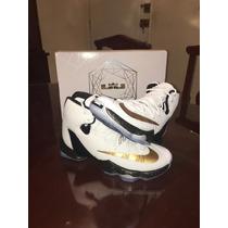 Nike Lebron James Xiii Nuevo 7.5 Mxmx