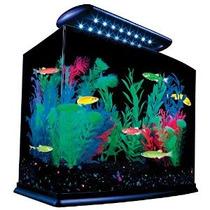Kit Tetra Glofish Acuario