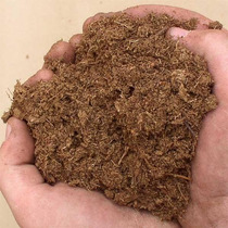 Peat Moss Turba Sustrato Terrarios Semilleros