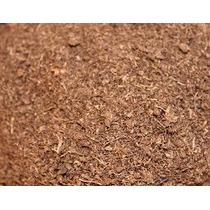 Peat Moss, Turba, Musgo, Carnivoras, Op4