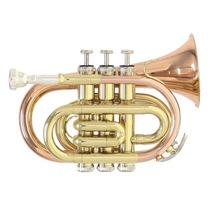 Trompeta Pocket Roy Benson Pt101g Nueva Meses S/intereses!