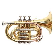Trompeta Pocket Roy Benson Con Estuche Pt-302 Tonalidad Bb