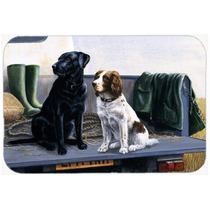 En El Tablero De La Puerta Posterior Labrador Y Perro De Agu