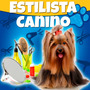 Como Poner Estetica Canina Profesional 2015 Guia Tips Y Mas