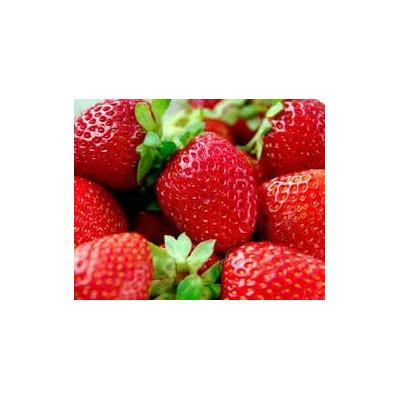 Fresa roja 20 semillas hortaliza planta jardineria sdqro for Jardineria queretaro